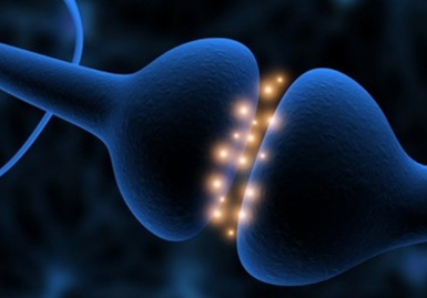 n-6-sinapsi-blu-pens-cre